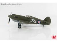HA9202 P-40B WarHawk